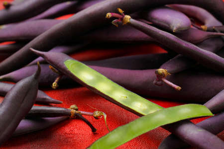 greenish blue: Blue French beans (purple beans) with one cut off bean pod Stock Photo