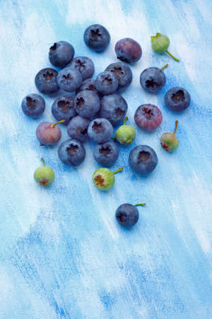unripened: Blueberries from organic, semi-wild cultivation over painted textile background. Some fruits unripe. Overhead view. Stock Photo