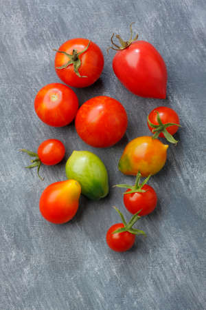 unripened: Variety of tomato fruits over painted textile background. Two fruits unripe. Overhead view. Stock Photo