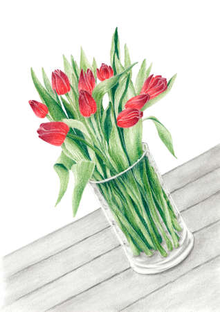Bunch of a tulips in a glass vase on a table. Graphite and colored pencils on paper.