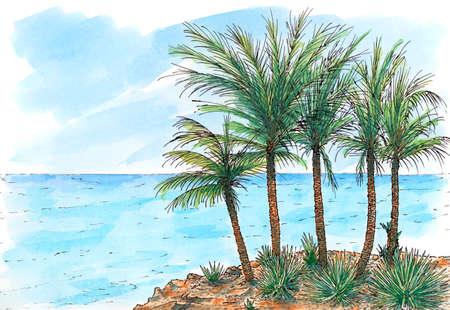Caribbean sea-coast with palm trees. Ink and watercolor on rough paper. Reklamní fotografie