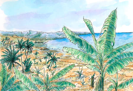 Caribbean landscape with banana and palm trees. Ink and watercolor on rough paper.