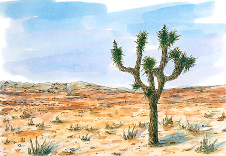Desert landscape with Joshua tree (Yucca brevifolia). Ink and watercolor on rough paper. Reklamní fotografie