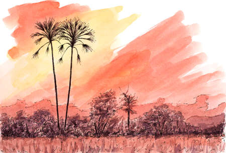 African sunset with palm trees. Ink and watercolor on rough paper.