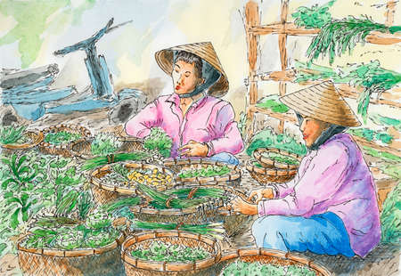 Vietnamese vegetable stall on a local market. Ink and watercolor on rough paper. Reklamní fotografie