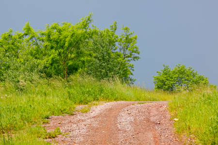 Stony and dirty rural road among meadows and bushes under dark sky before storm. Poland, The Holy Cross Mountains.
