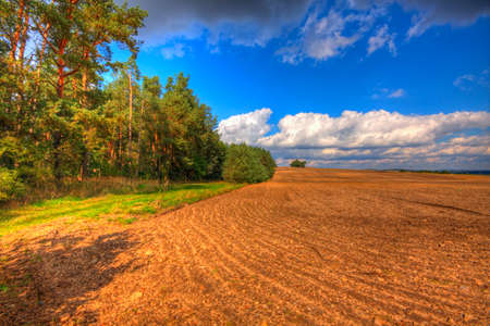 Ploughed field at late summer. HDR image. Poland, The Holy Cross Mountains.