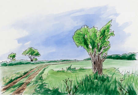 Landscape with tree and rural road. Loose sketch. Ink and watercolor on cardboard.