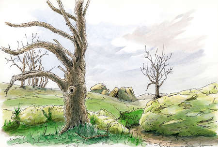 Landscape with tree. Loose sketch. Ink and watercolor on paper.