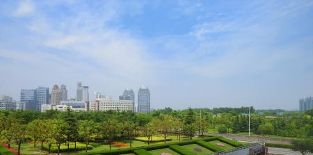 Beatiful garden and city scape on the background