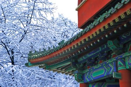 Beautiful asian temple in the winter garden