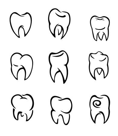 diente caries: Conjunto de los dientes para el dise�o deantal y m�dicos. Ilustraci�n vectorial Vectores