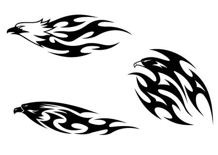 head protection: Predator birds tattoos for design. Vector illustration