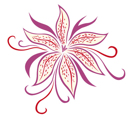 pink lily: Lily flower isolated on white background. vector illustration