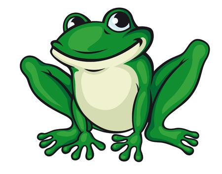rana caricatura: Rana verde grande aislada en blanco. Ilustración vectorial