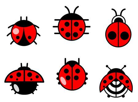 catarina caricatura: Mariquitas y los escarabajos iconos conjunto. Ilustración vectorial Vectores