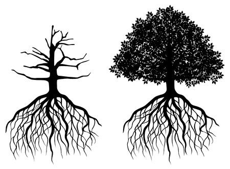 흰색에 고립 된 뿌리를 가진 나무. 벡터 일러스트 레이 션 일러스트