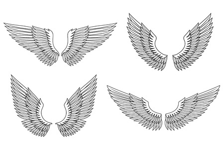 Set of angel wings for heraldry design. Vector illustration