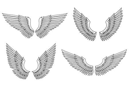 Set of angel wings for heraldry design. Vector illustration