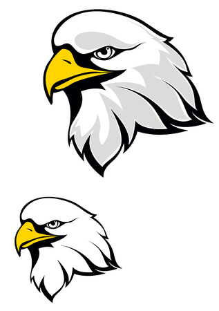 Eagle head isolated on white background. Vector illustration Vector