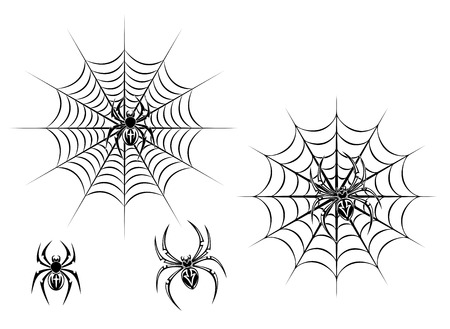 spider web: Black danger spiders on web for tattoo design