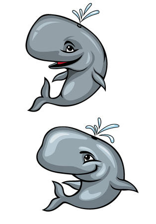 baleen: Cartoon funny grey whales isolated on white for mascot