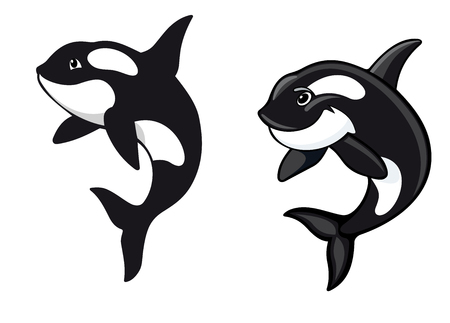 breach: Two killer whales in cartoon style for wildlife design