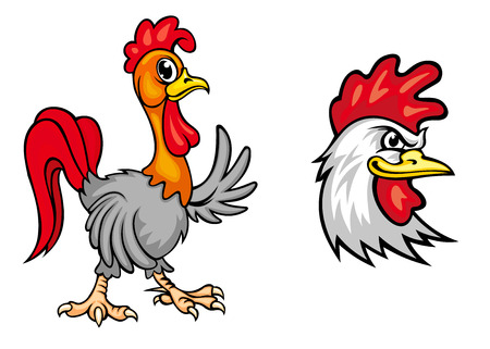 strutting: Cartooncolorful roosters mascots, one young one strutting along waving a wing and the head of a fierce looking cock Illustration