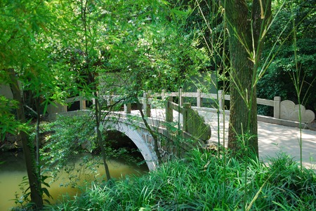 ponte giapponese: Bridge in asian park as a concept of conservation nature