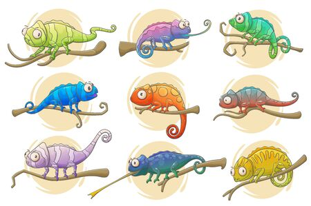 Chameleon lizard icons of reptile animals vector design. Colorful chameleons sitting on branches of exotic tropical forest or jungle tree with long tails, tongues and bright camouflage patterns Illustration