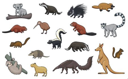 Animal cartoon icons of hunting sport, zoo and wildlife. Vector kangaroo, koala and platypus, kiwi bird, porcupine, badger, beaver and lemur, chipmunk, capybara and sloth, armadillo, skunk, anteater