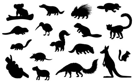 Wild animal black silhouettes of hunting sport and zoo vector design. Kangaroo, koala bear, badger and beaver, platypus, kiwi bird, porcupine and lemur, echidna, capybara and armadillo wild animals