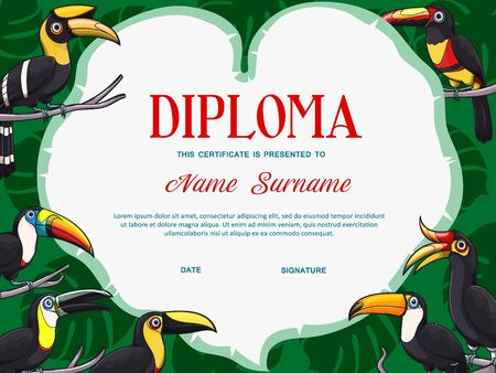 Certificate diploma vector template of kid education with frame border of toucan birds. School graduation award, kindergarten or preschool achievement certificate with exotic toucanets and palm leaves