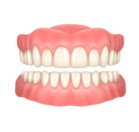 Dentures or false teeth realistic vector design of orthodontics and aesthetic dentistry medicine. Upper and lower jaws with fake teeth, 3d dental prosthesis on white background, healthcare themes