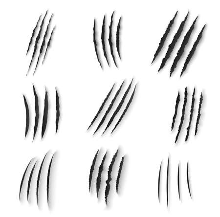 Claws scratches isolated vector wild animal nails rip, tiger, bear or cat paws sherds on white background. Lion, monster or beast break, four claws scratch traces, realistic 3d marks on paper texture