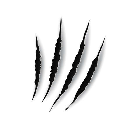 Monster claw mark scratches, predator nails vector trail. Wild animal tiger bear or cat paws talon rips or sherds. Lion, dragon or danger beast break traces, realistic 3d marks on white background.