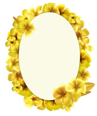 owalne: Projekt owalny kształt złotymi Plumeria kwiatów ramki do zdjęć na białym. Wysoka rozdzielczość
