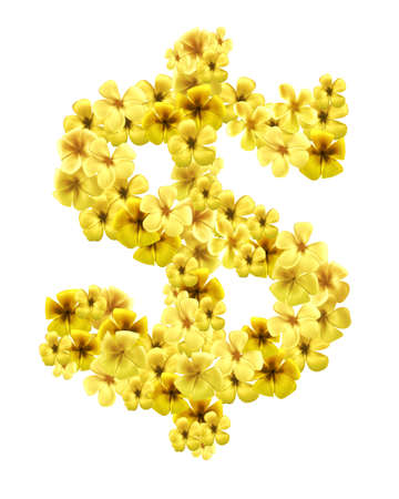 dollar sign, symbol with golden plumeria flowers isolated on white background Stock Photo - 9849259