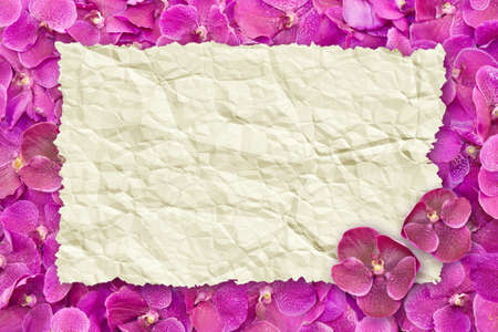 Old paper wrinkled on Thai orchid isolate on white background photo