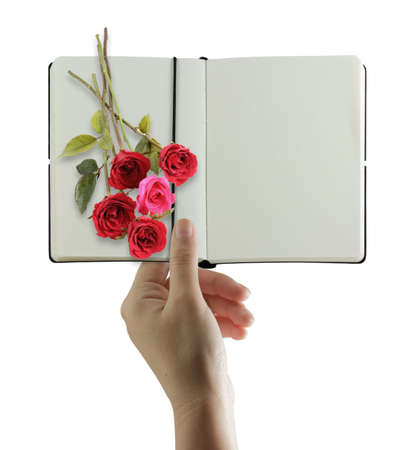 Hand holding and sending a book with blank and roses Stock Photo - 10372644