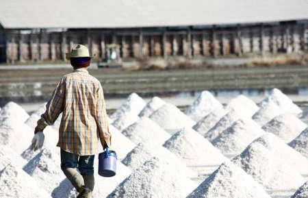 salt crystal: Salt farm in Thailand