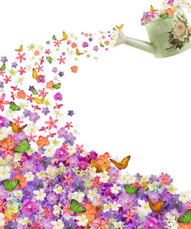 plenty flower and butterfly from vintage sprinkling can isolated on white background photo