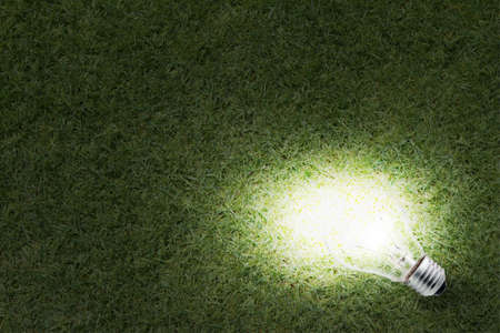 Eco Friendly Energy light bulb glowing in the grass at night and business concept photo