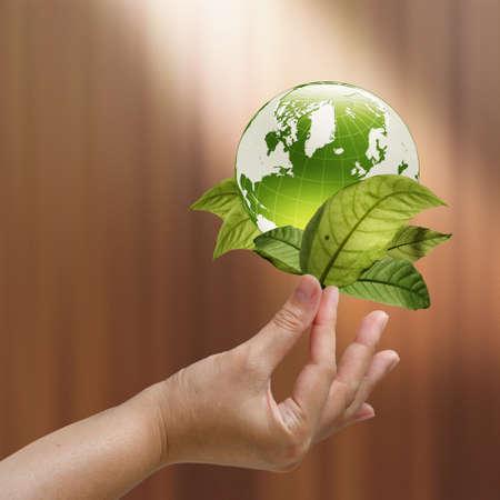female hand show green earth Stock Photo - 12246724