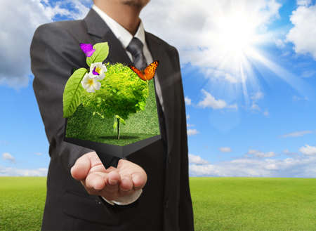 Businessman holding a creative box of tree in his hand with green meadow on the background photo