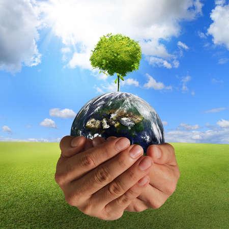 ahorrar agua: �rbol en la tierra en el concepto de las manos, los elementos de esta imagen proporcionada por la NASA