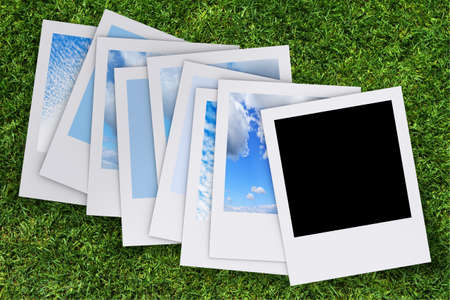 blank photo on grass background Stock Photo - 13770583