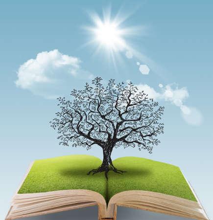 bomen zwart wit: open boek van de grote boom fantacy Stockfoto
