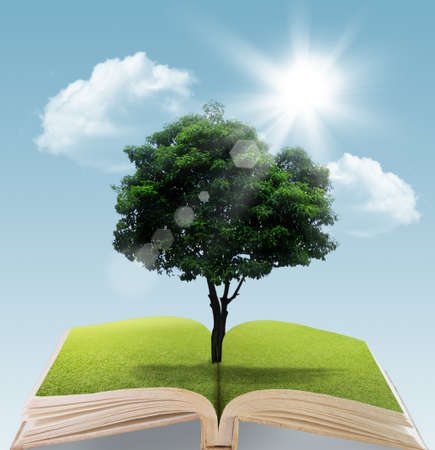 Book with tree on natural background  education concept photo