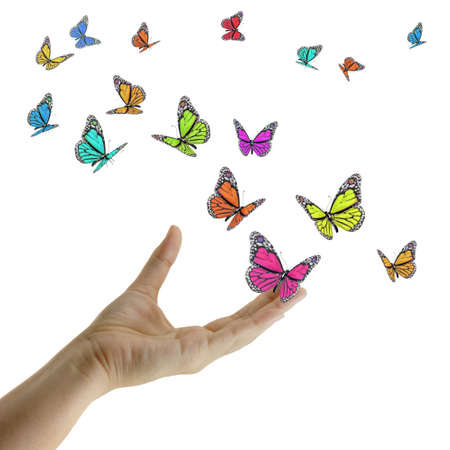 Hand releasing exotic butterflies on white photo